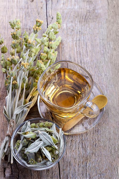 beneficios saludables del té