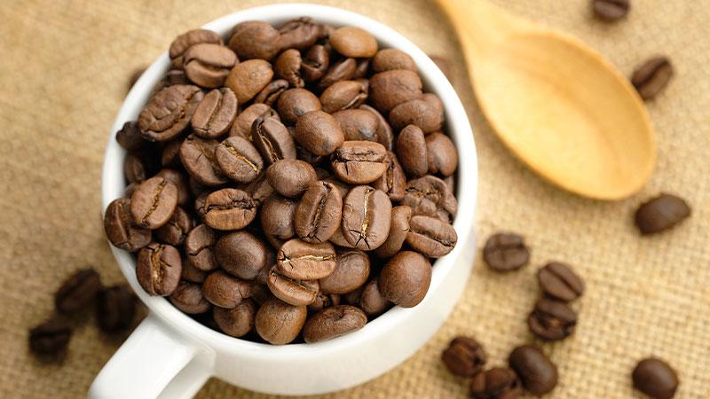 variedades del café Arábica
